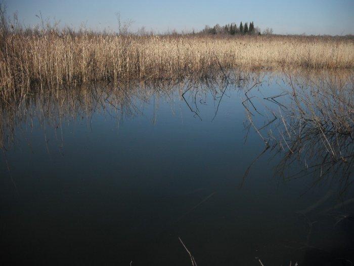 Весна.Озеро.
