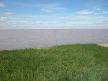 Степной Алтай Розовое озеро (рапа)