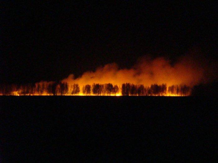 Ночное пожарище.