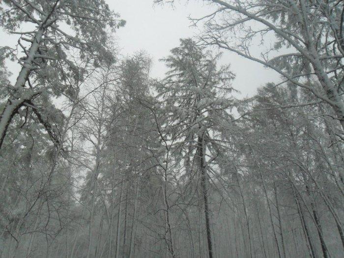 май 2012!снег....