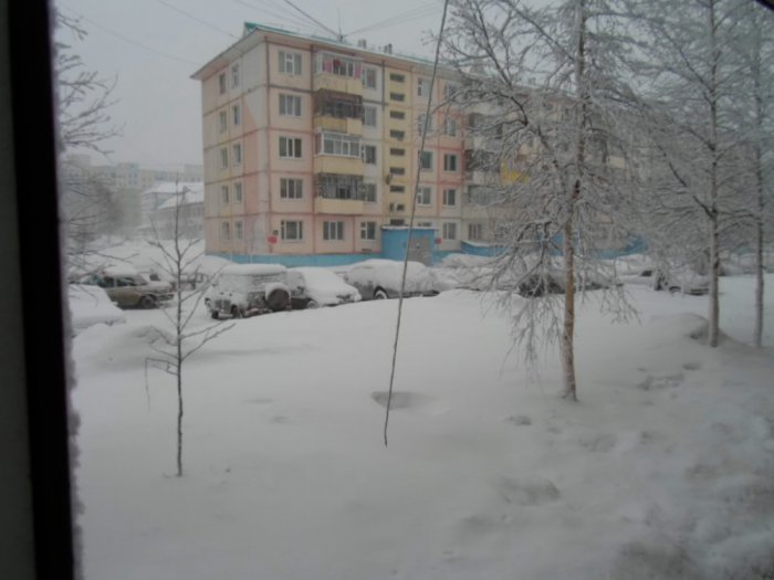 Утром снег.21 04 2014г.