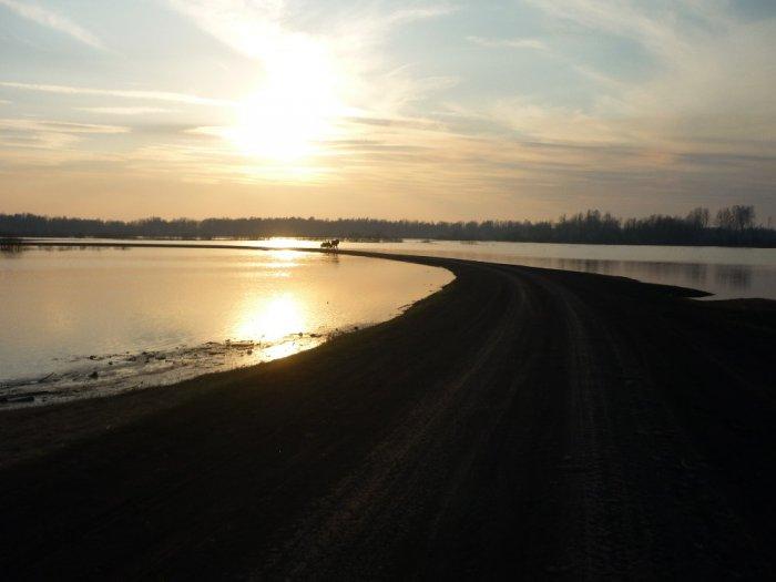 Река Тартас.