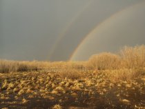 Весенняя радуга