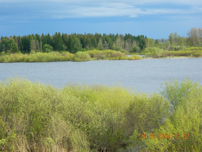 Спасская Заимка . Вид на озеро из панорамного окна.