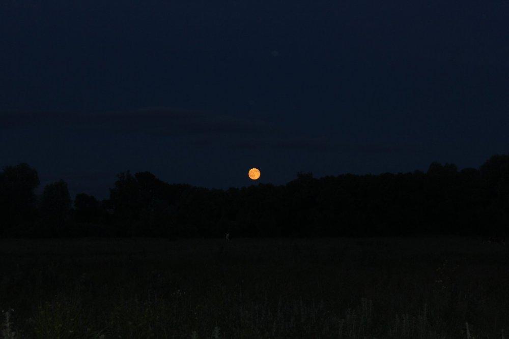 Луна,луна!