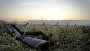 Охота на изюбря охота и рыбалка в