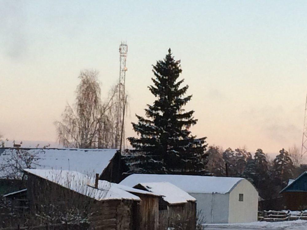 Глухарь в центре Белоярки
