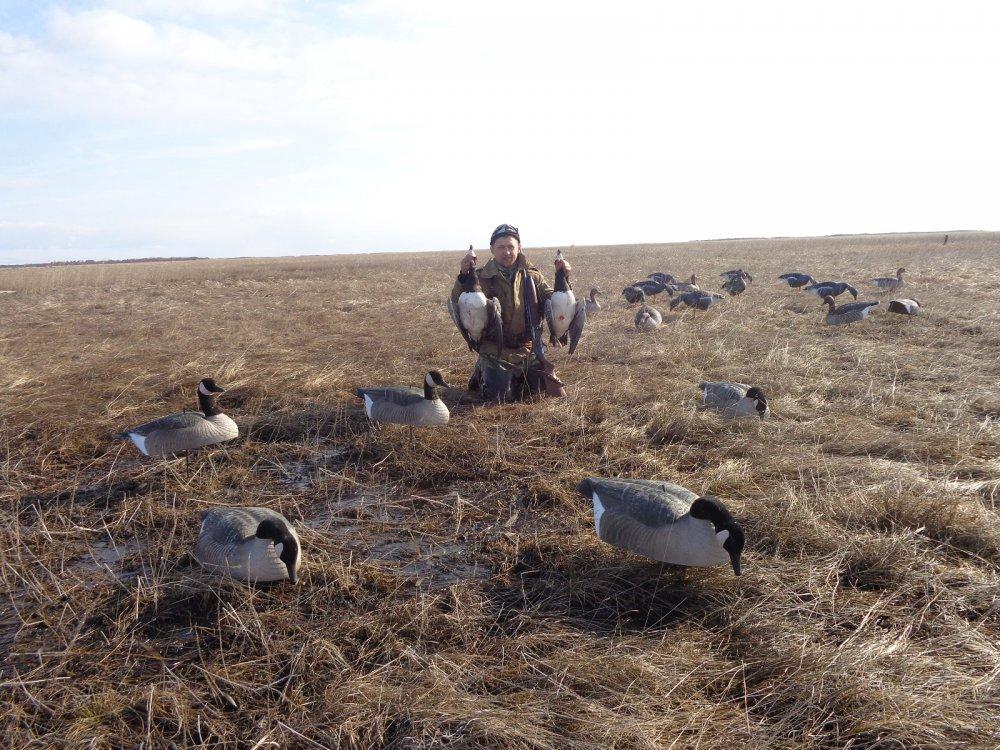 Фото для биолога и охотоведа!