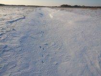 Настоящие охотники мороза не бояться!