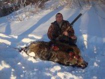 закрытие охоты на кабана.