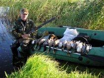 Открытие охоты на утку в Карелии