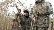 Охота на уток в ноябре.