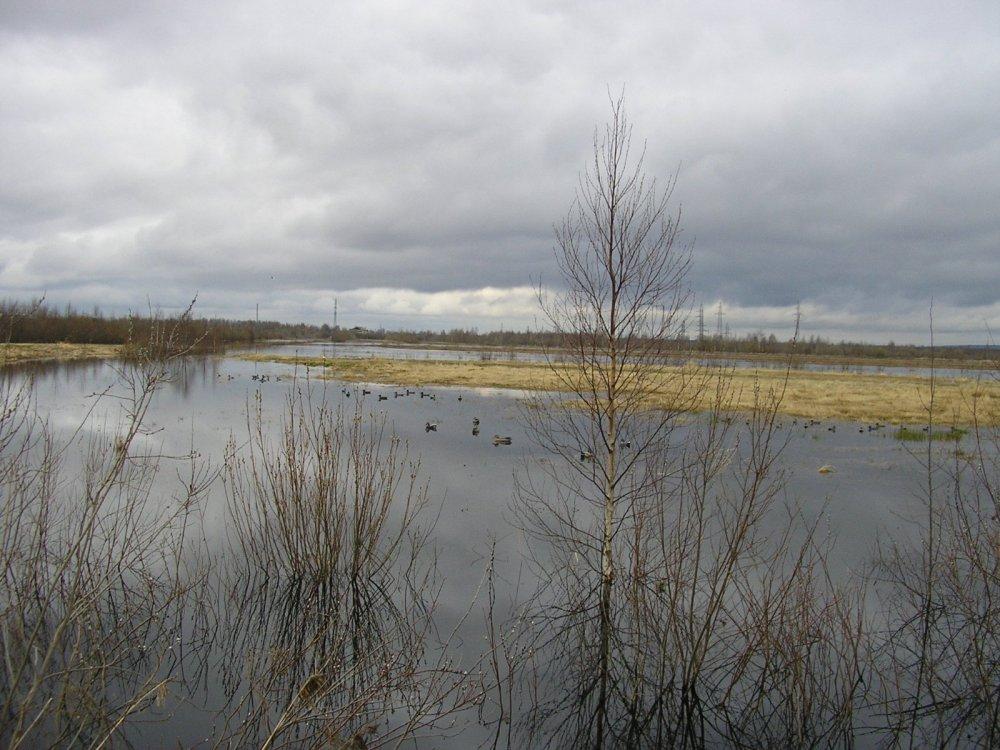 Весенние разливы