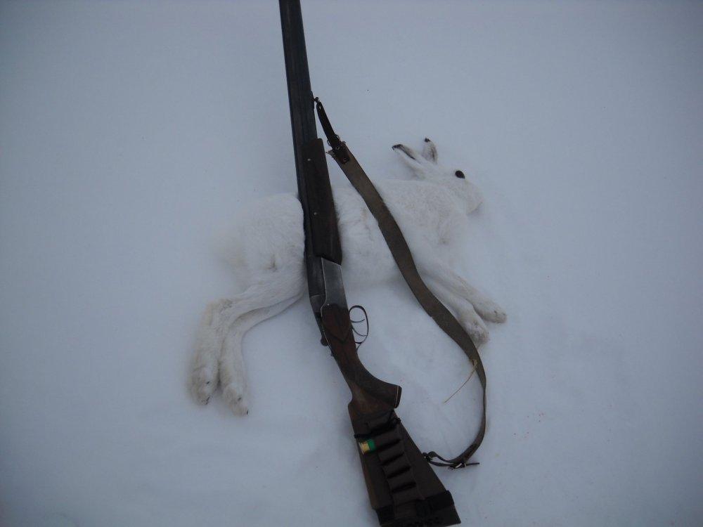 Удачное закрытие охоты.