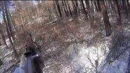 Загонная охота на сибирскую косулю