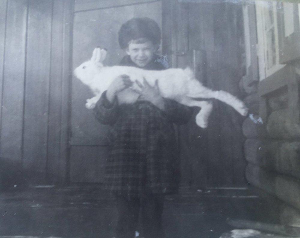 80-е года.Отец привез с охоты зайца.