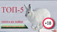 ТОП 5. Охота на зайца. Лучшие выстрелы.