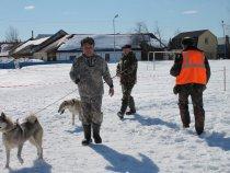 4 - я Молчановская межрайонная выставка охотничьих собак .