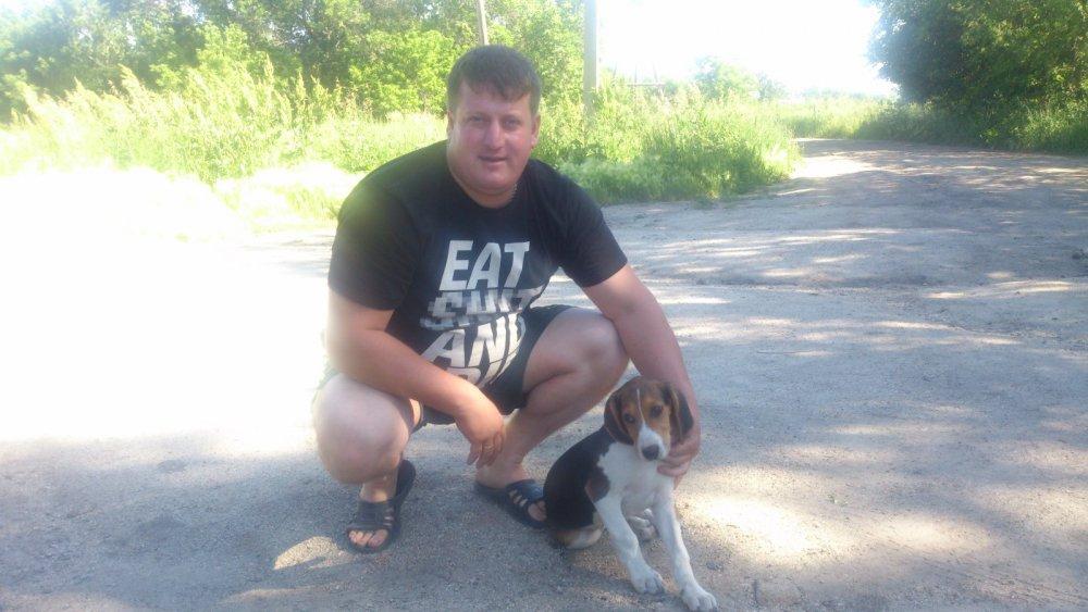 первая встреча с щенком