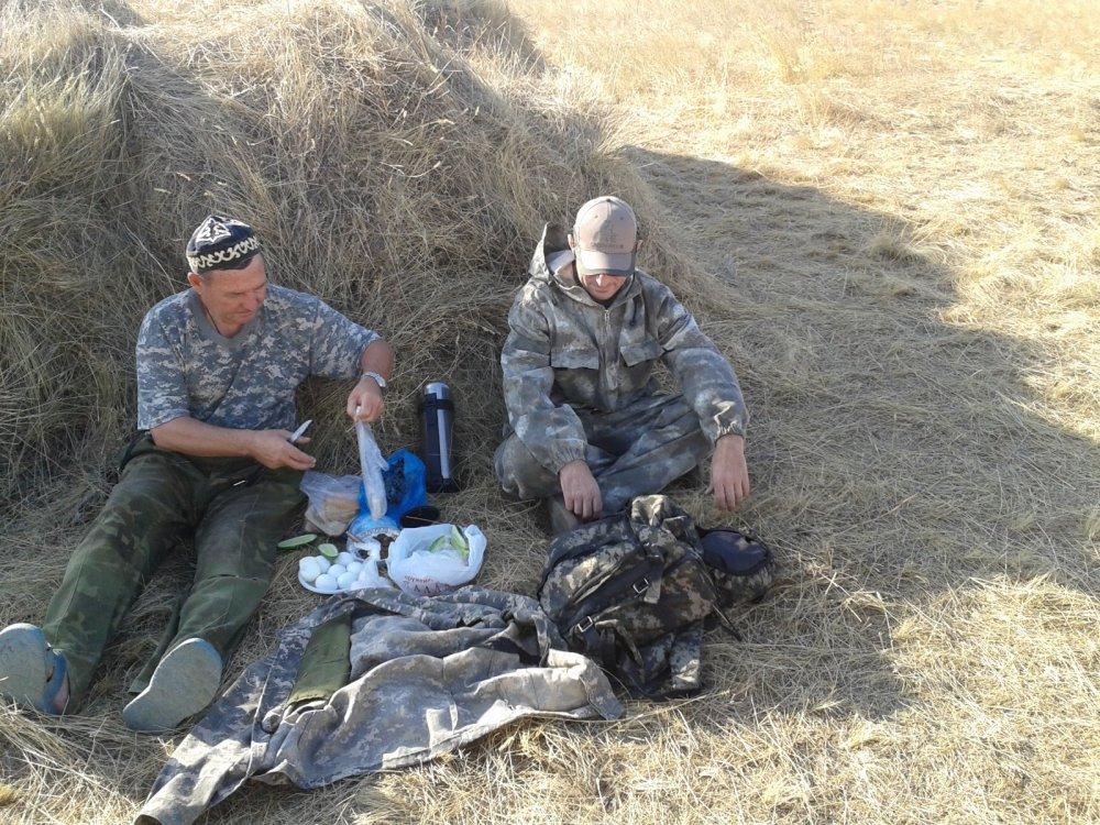 Охота не задалась, так хоть пообедать на сене. )