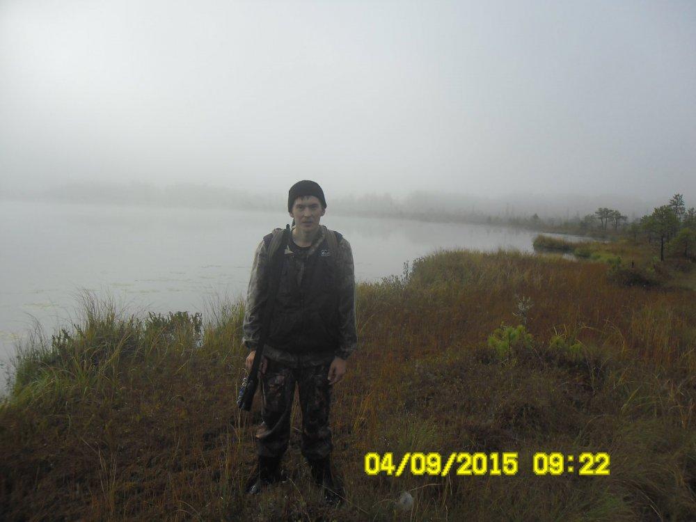 Как ёжик в тумане