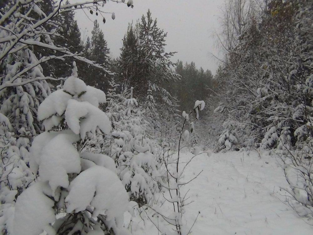 Первый снег 09 октября 2015