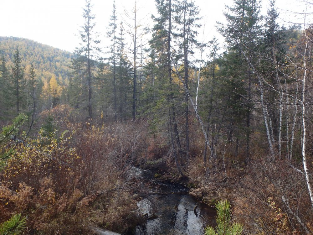 Живописные уголки Сибири