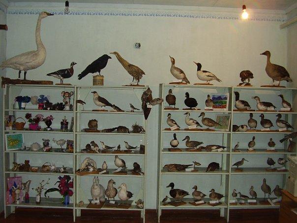 комната в конторе ГПБЗ «Центральносибирский»