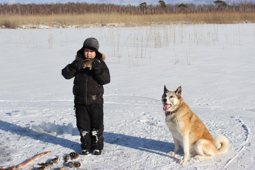 вчера открывали сезон подледной рыбалки)