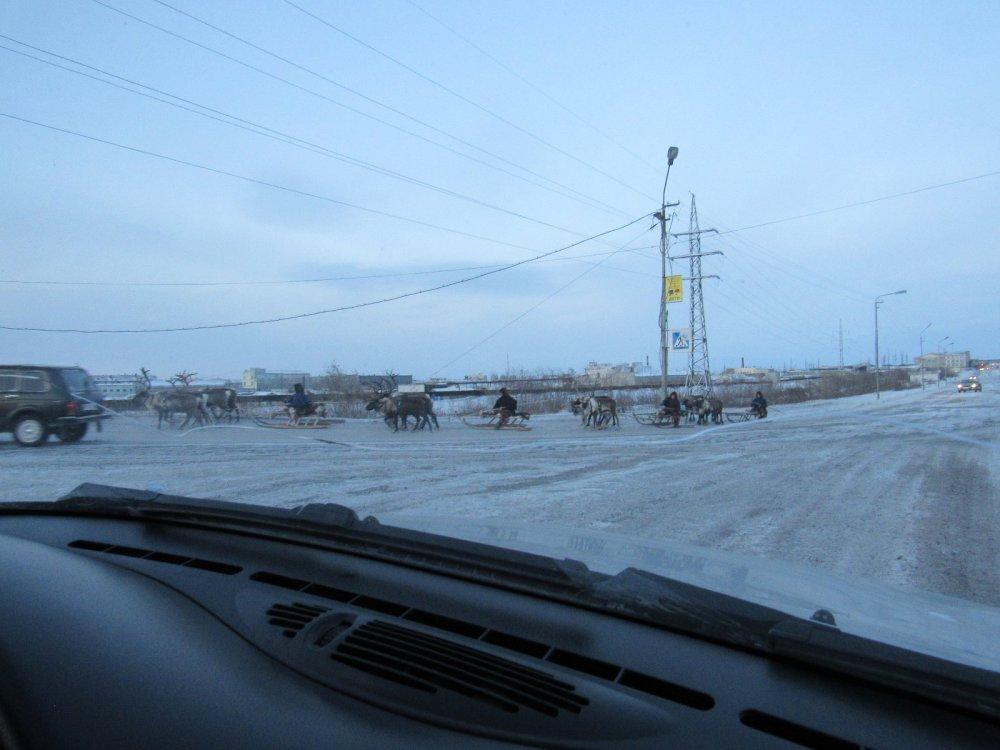 Воркутинские таксисты