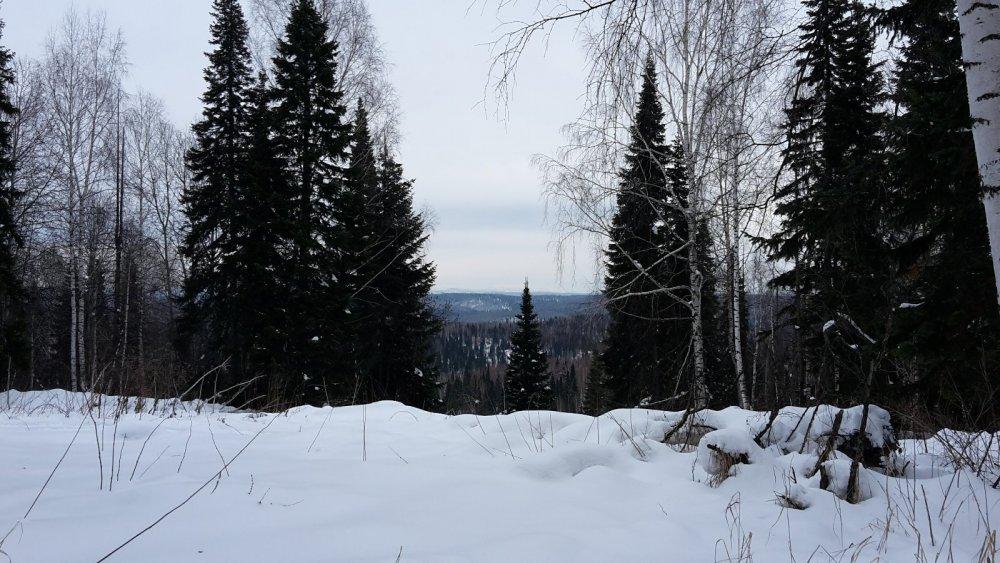 горы Кузнецкого Алатау