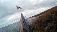 Охота на утку, морская