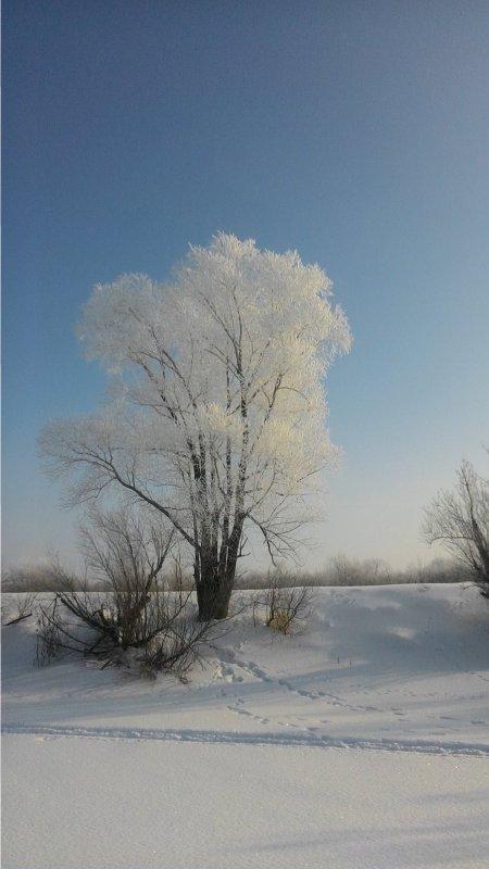 Хрустальное дерево!!!