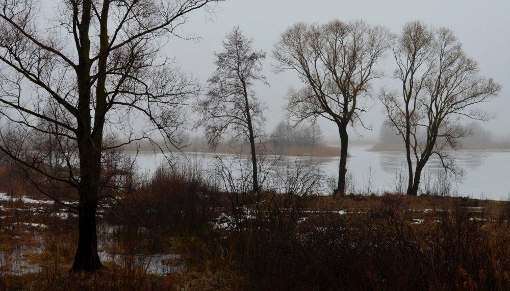 Туманный март. 3