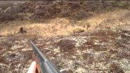 охота на медведя Камчатский край.