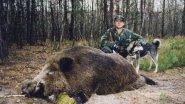 Охота на кабана. Из цикла |Охота в регионах России|