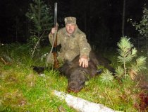 Медведь 28.8.2015