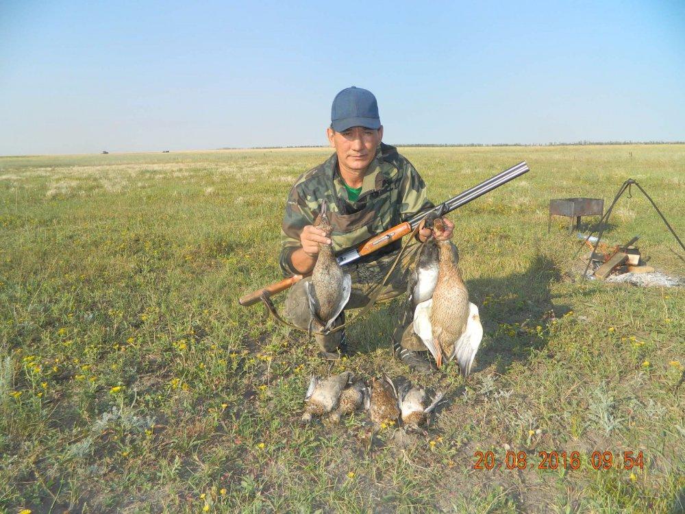 Друг и напарник по охотам.