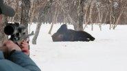 Охота на медведя. Настоящая русская охота.