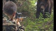 Медведи Волкова. Фильм о профессиональном охотнике.