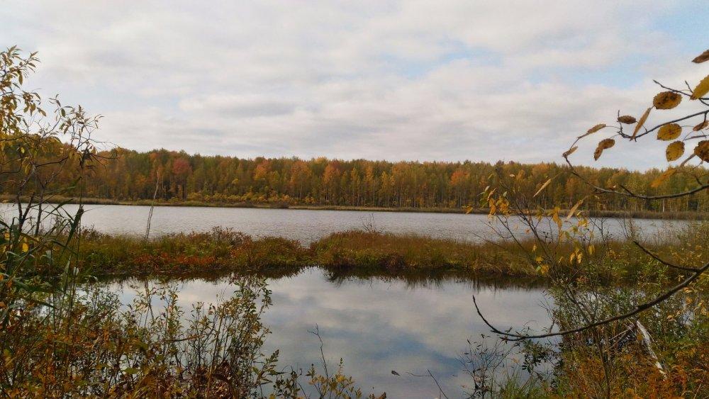 Озеро в тайге...
