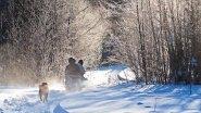 Суровая зимняя охота! Промысел. Из цикла |Охотничьи экспедиции|