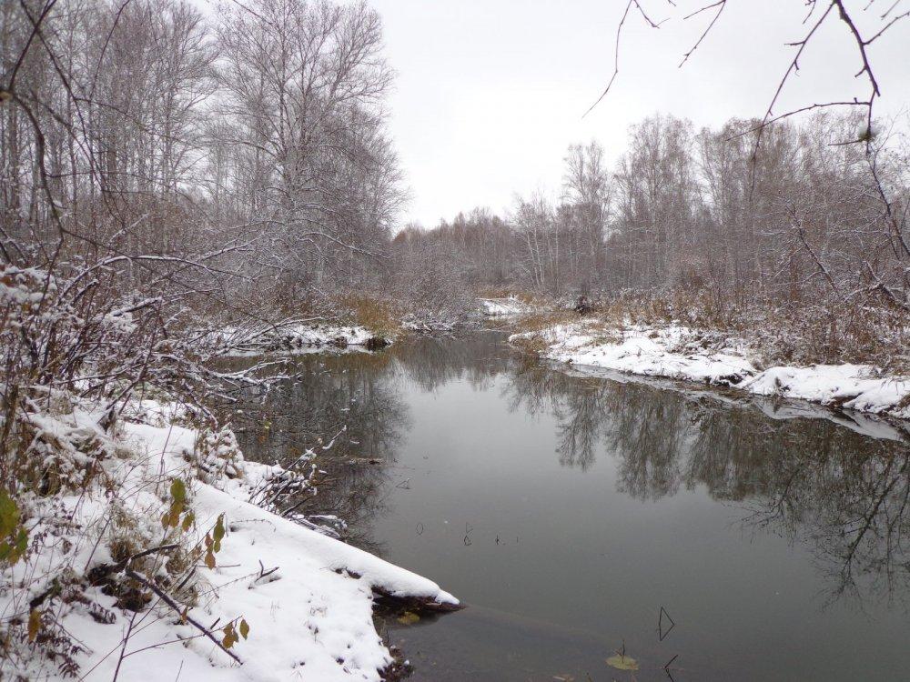 Речка Лебяжья.