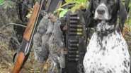 Охота на Вальдшнепа и Гуся. Из цикла |Охота в регионах России|