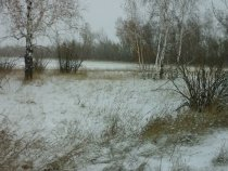 снегу навалило за ночь