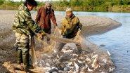 Сплав по таежной реке Усть Майе! Нетронутые места Крайнего Севера.