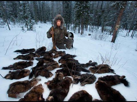 ловля собаля