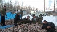 Особый способ ловли рыбы в зимний период-Куйуур. Рыбаки Куйуурщики.
