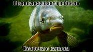 """Подводная охота """"Встреча с карпом"""""""
