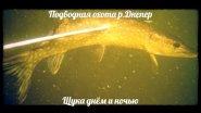 """Подводная охота """"Щука на Днепре"""""""